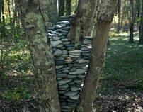 """""""Tree Stones"""""""