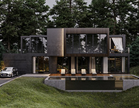 EXTERIOR. Black modern house in the woods
