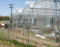 GREEN HOUSE GEOTHERMAL PROJECT 70KW