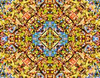 Kaleidoscopia