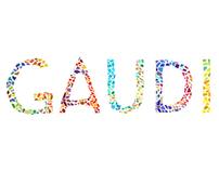 Gaudi Brochure