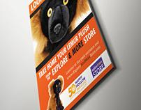 The Explore & More Store Lemurs Poster Theme