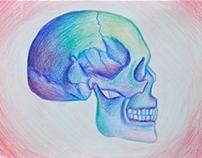 Skulls & Such