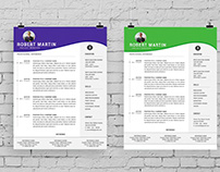 Resume/CV/ BIO Template
