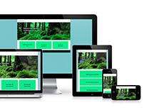 WILLY STASSEYNS: WORDPRESS RESPONSIVE WEBSITE DESIGN