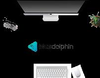 bluedolphin branding