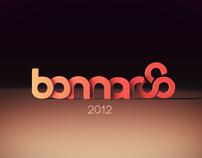 Bonaroo  2012
