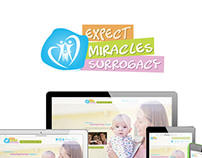 Expect Miracles Surrogacy
