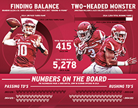 2014 Arkansas Razorbacks Season Stats Wrap-Up Poster