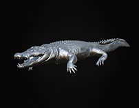CROCODILE HIGH POLY