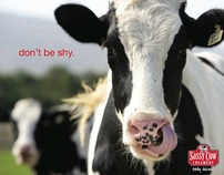 Sassy Cow Campaign