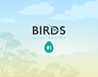 Birds Illustration #1