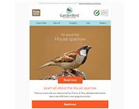 GardenBird email examples - desktop