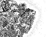 America´s Flora & Fauna Map