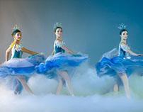 Les Grands Ballets - Nutcraker