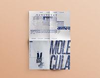 Molécula / Desplegable Tipográfico