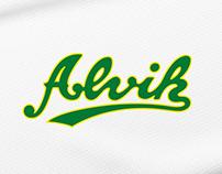 Alvik Basketball