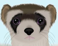 Black Footed Ferret Stamp