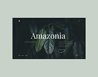 Amazonia - Web