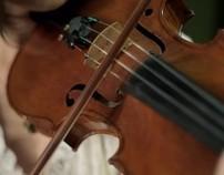 Palingenesis – string quartet