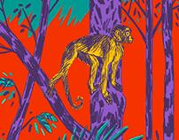 Amazonia ameaçada
