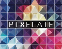 Pixelate — The Realm Of Meaning