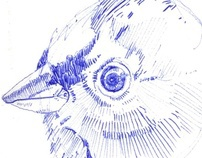 Biro Birds