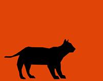 Schrödinger's Cat Infographic