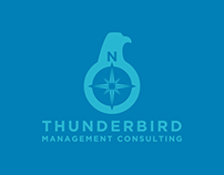 Thunderbird Management Consulting