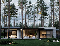 In harmony with nature: a house for two in Repino