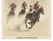 ON the trot - Polo Crosse