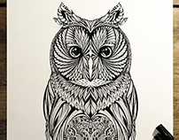 'Long Eared Owl' - commission for Hoot Watches