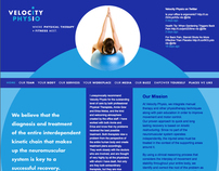 Velocity Physio New York Brand Identity + Website