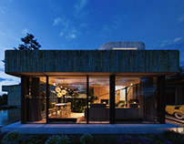 Earth-sheltered villa;