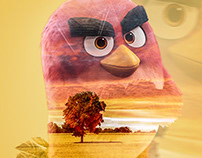 Angrybirdsofficial 🐔Double Exposure