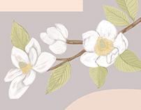 Catalogue Design: Manuela Castaño Jewelry
