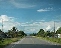 La ruta de la orquidea