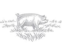 Illustrations for sausages label