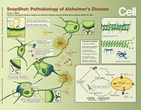 Pathobiology of Alzheimer's Disease