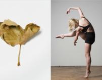 Dancers & Garbage