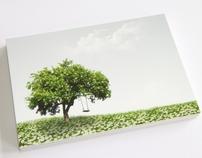 accessoire cuir postcard serie 2007