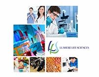 LLS brochure