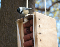 Birdhouse Design for Chickadee