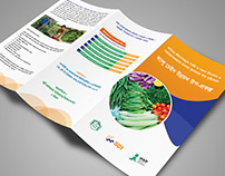 SDI Brochure Design