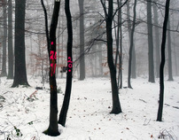 winterscapes