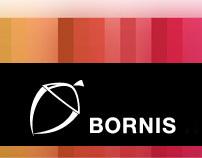 Bornis Network