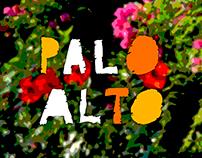 PALO ALTO, Vint-i-cinc anys (més dos, potser més)