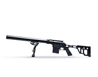 Lobaev Arms | Website