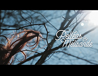 Pelléas et Mélisande - Opéra de Lyon - Teaser