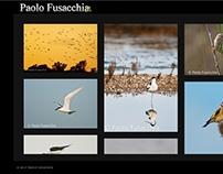 PaoloFusacchia.It